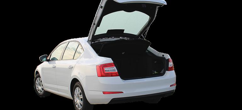 Open trunk